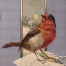 Robin Delivering Special Greetings, 1917 Vintage Postcard - 4342