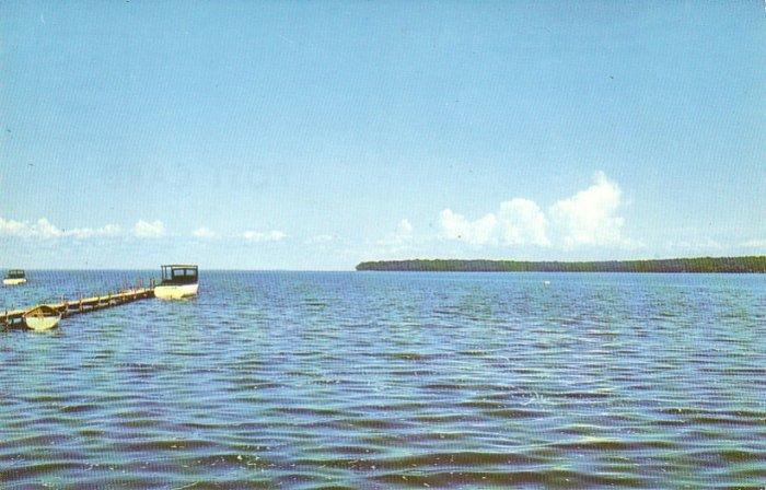 Mille Lacs Lake Minnesota MN 1956 Chrome Postcard - 4540