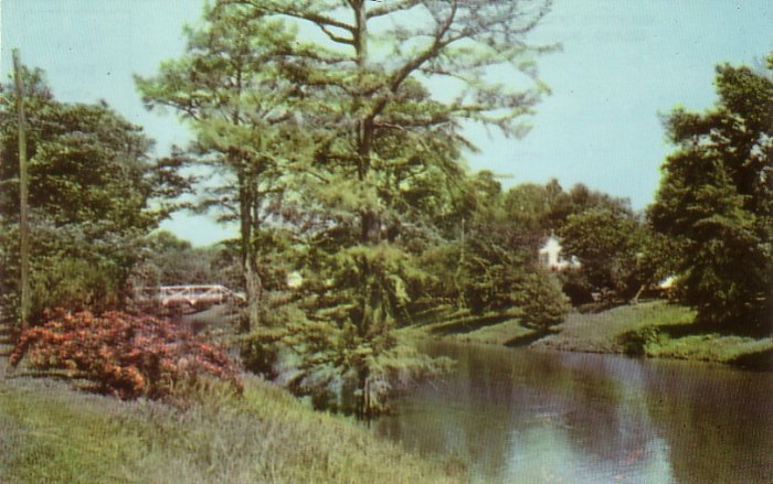 Deer Creek at Leland Mississippi MS, 1955 Curt Teich Chrome Postcard - 4548