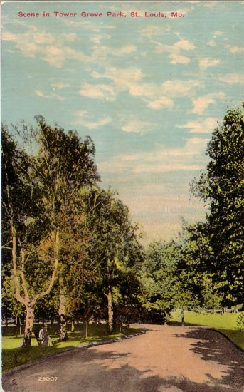 Scene in Tower Grove Park, St. Louis Missouri MO Vintage Postcard - 4572