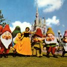 Snow White & Seven Dwarfs Walt Disney World Chrome Postcard - 4600