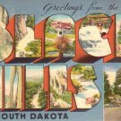 Greetings from the Black Hills South Dakota SD, Large Letter Linen Postcard - 4606