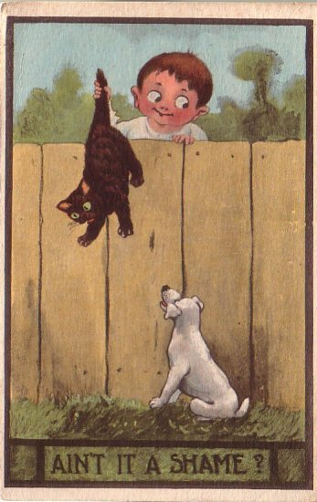Wicked Boy Tossing Cat to Dog 1912 Comic Vintage Postcard - 4619