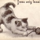 Cat & Mouse 1913 Vintage Postcard Artist Fred L. Cavally Jr. - 4660