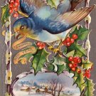 Blue Bird of Happiness New Year 1910 Vintage Postcard - 4664