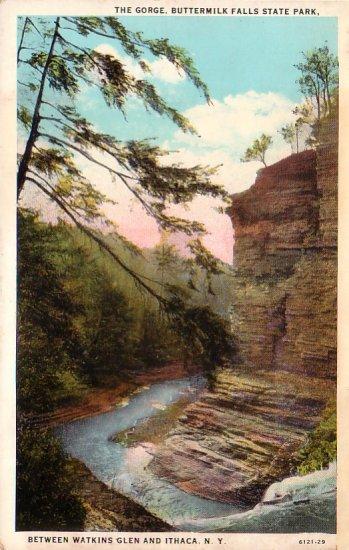 Gorge at Buttermilk Falls State Park Watkins Glen New York NY Vintage Postcard - 4707