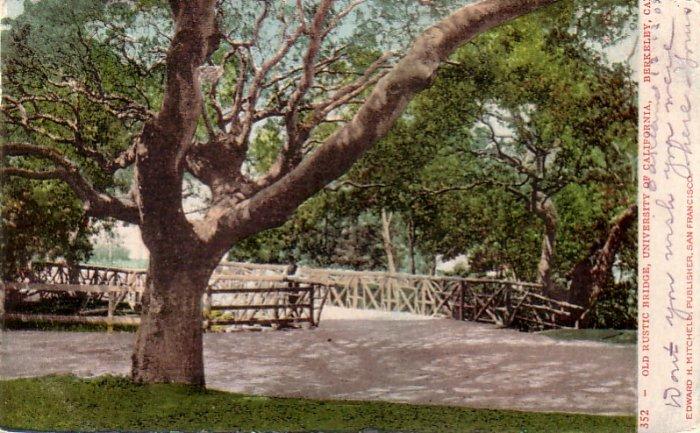 Old Rustic Bridge at University of California, Berkeley CA Vintage Postcard - 4783