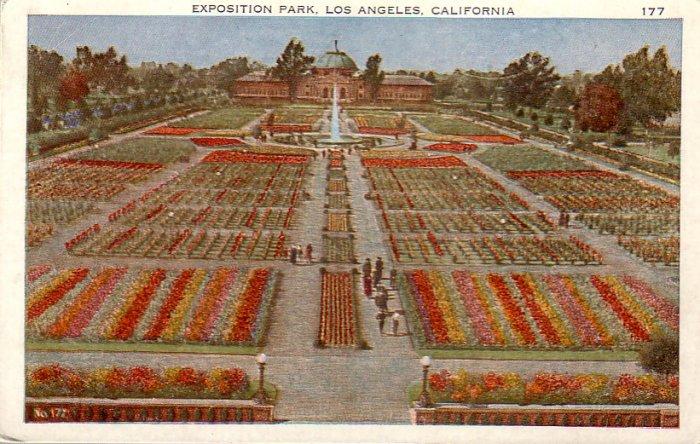 Exposition Park in Los Angeles, California CA Vintage Postcard - 4856