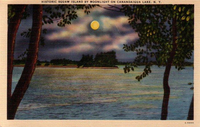 Squaw Island by Moonlight Canandaigua Lake New York NY Postcard - 4891
