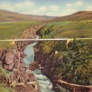 Sapinero Bridge over Gunnison River near Gunnison Colorado CO Curt Teich Linen Postcard - 4993
