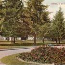 University of Oregon Campus in Eugene OR Vintage Postcard - 4997