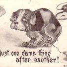 Life is Just One Damn Thing After Another! 1909 Vintage Postcard - 5009