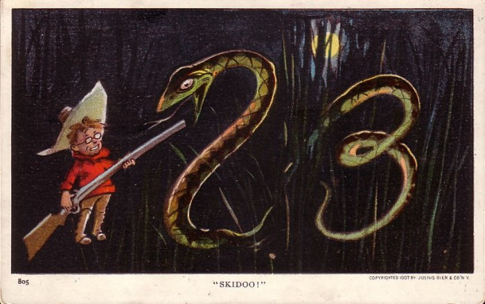 Boy with Large Gun Telling the Snake to 23 Skidoo 1907 Vintage Postcard - 5057