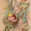 Dressed Rabbit Pushing Wheel Barrel filled with Easter Eggs 1912 Vintage Postcard - 5082