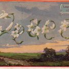 Language of Flowers, Lily Meaning Peace 1911 Vintage Postcard - 5111