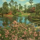 Famous Cypress Gardens in Winter Haven Florida FL Chrome Postcard - 5249