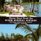 Warm Mineral Springs in Venice Florida FL Curt Teich 1956 Chrome Postcard - 5252