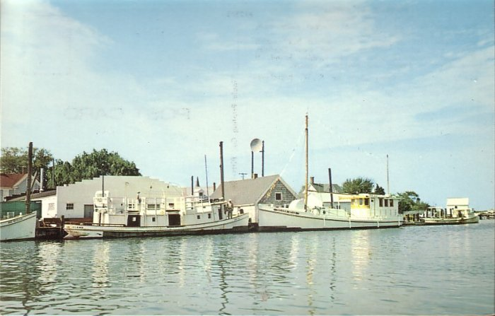 Harbor at Ewell Smith Island Maryland MD, Mid Century Chrome Postcard - 5267