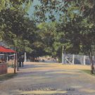 Marsalis Zoo in Dallas Texas TX Mid Century Linen Postcard - 5276