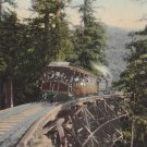 Mt. Tamalpais Railway Car Loaded with Passengers, California CA Vintage Postcard - 5289