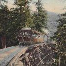 Mt. Tamalpais Railway Car Loaded with Passengers, California CA Vintage Postcard - 5289