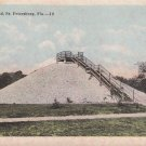 The Shell Mound at St. Petersburg Florida FL Vintage Postcard - 5296