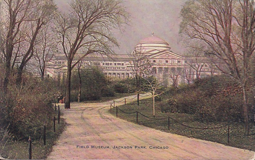 Field Museum at Jackson Park in Chicago Illinois IL - 5383