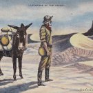 L.H. Dude Larsen Artist Signed 1941 Landmarks of the Desert Linen Postcard - 5397