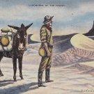 L.H. Dude Larsen Artist Signed 1941 Landmarks of the Desert Linen Postcard - 5397