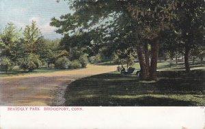 Beardsly Park Bridgeport Connecticut CT, Undivided Back Vintage Postcard - 5402
