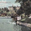 Swans in West Lake Park, Los Angeles California CA Vintage Postcard - 5422