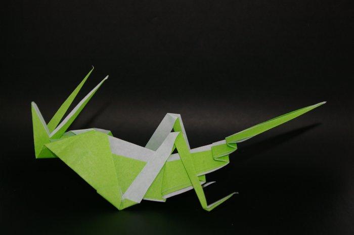 Origami Grasshopper