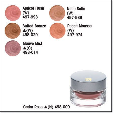 Avon BEYOND COLOR Mousse BLUSH Buffed Bronze (W) Discontinued