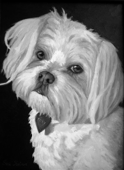 Custom Order Pet Portraits in Black and White