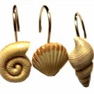 Resin Seashells Shower Curtain Hooks