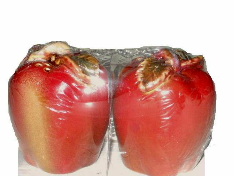 Ceramic Apples Salt and Pepper Shakers Apple Kitchen Decor