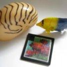 Nautilus Clown Fish Puzzle Toy - Unique