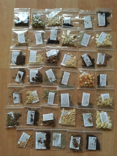 41 VARIETY EMERGENCY SURVIVAL HEIRLOOM VEGETABLE GARDEN SEEDS NON GMO ORGANIC