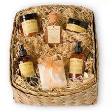 Gilden Tree Foot and Body Essentials Gift Basket