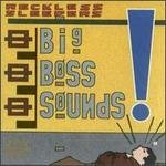 Reckless Sleepers CD Big Boss Sounds  $7.99 ~ FREE SHIPPING JULES SHEAR