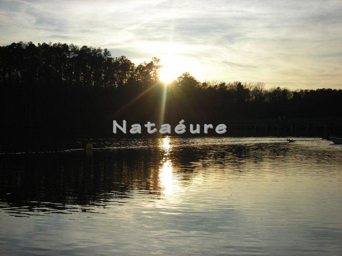 Lake Johnson Sunset 11x14