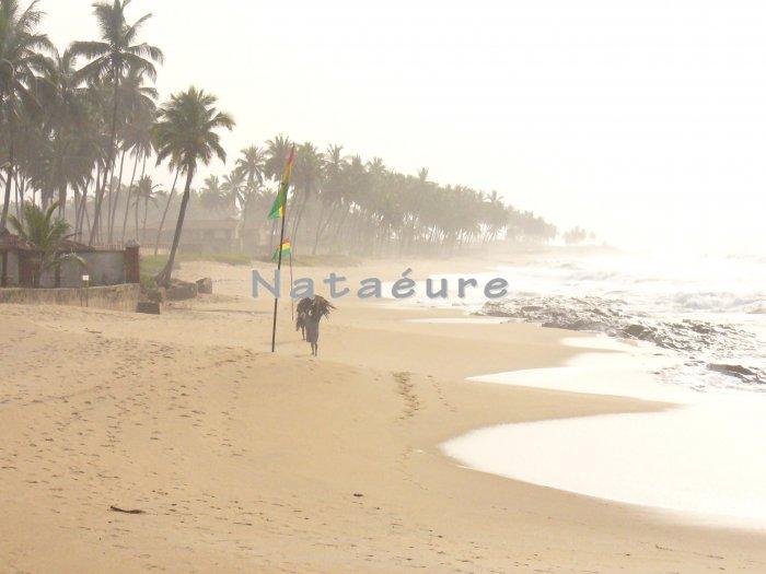 Elmina Beach Shoreline 11x14