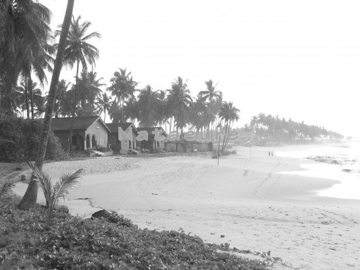 Elmina Beach Shoreline II 11x14