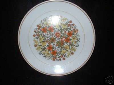 Corelle Corning Ware Indian Summer Dinner Plates x 4