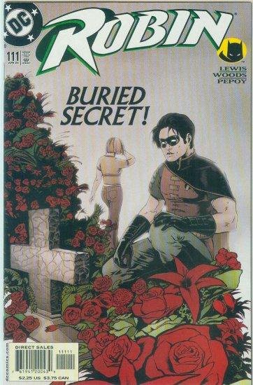 ROBIN #111 (2003)