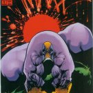THE MAXX #1 (1993)