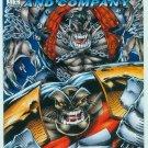 BADROCK & COMPANY #1 (1994)