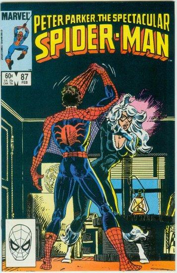 SPECTACULAR SPIDER-MAN #87 (1984)
