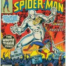 SPECTACULAR SPIDER-MAN #9 (1977) BRONZE AGE