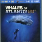 Whales of Atlantis: In Search of Moby Dick Blu-ray + DVD